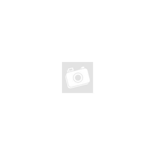Spirálfüzet PUKKA PAD Vogue regiszteres A/4 100 lapos vonalas rózsaszín