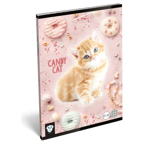 Füzet LIZZY A/5 32 lapos kockás 27-32 Candy Cat